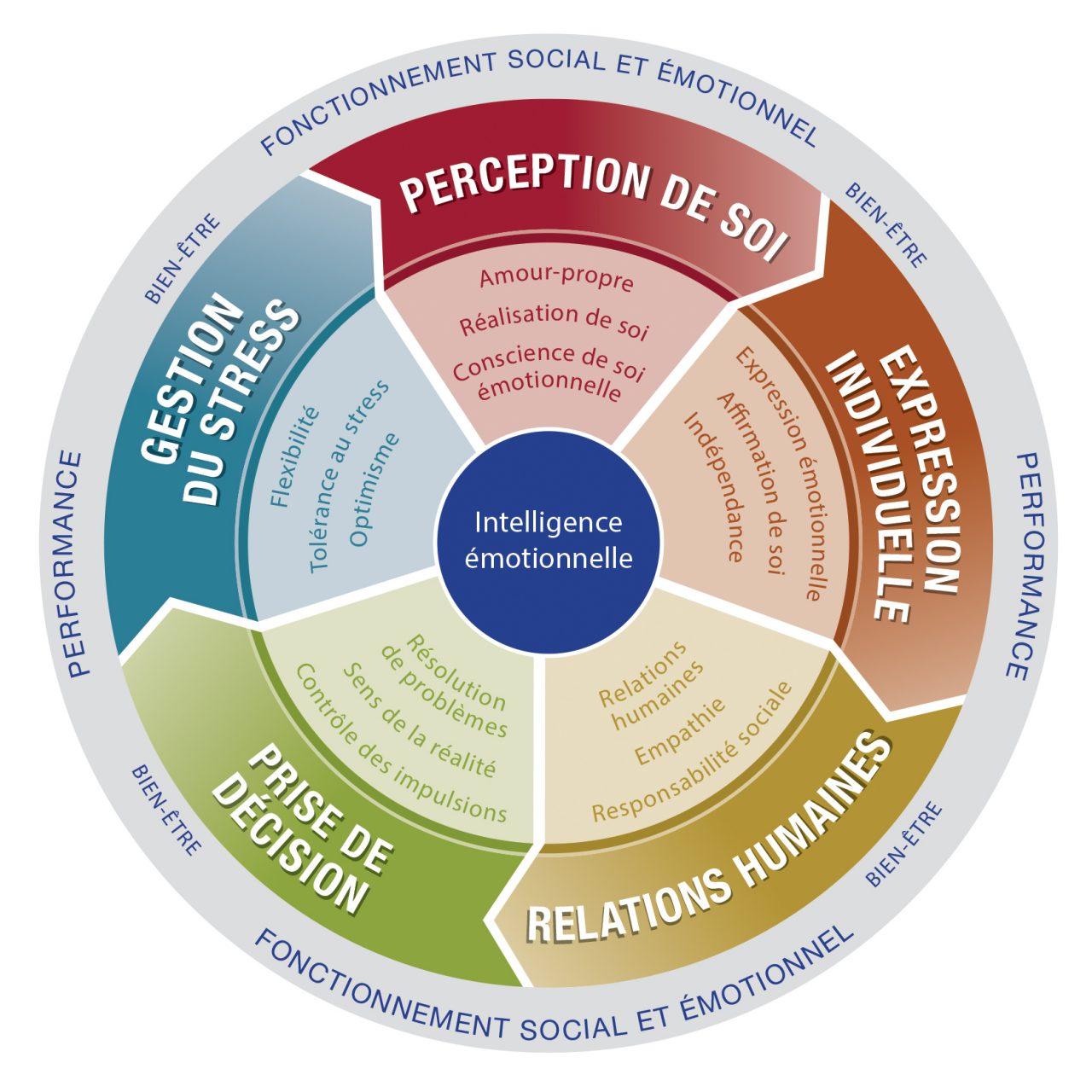 https://www.pepsequilibre.com/wp-content/uploads/intelligence-emotionnelle-testEQ-i-2-0-1280x1280.jpg
